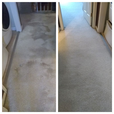 Residential Carpet Cleaning1